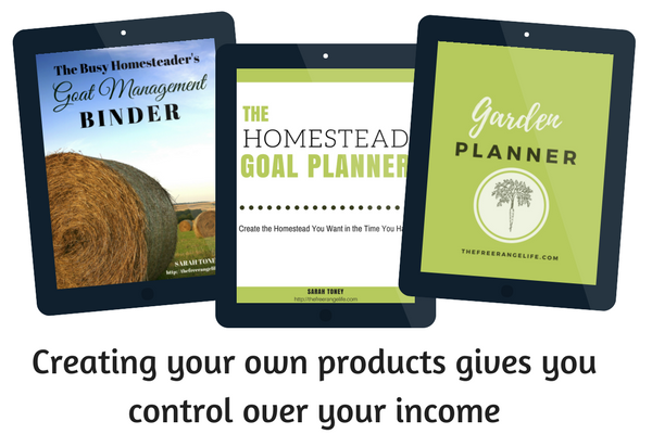 Take you blog to the next level by creating and selling your own products